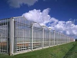 Сreation of greenhouse facilities in Kryvyi Rih